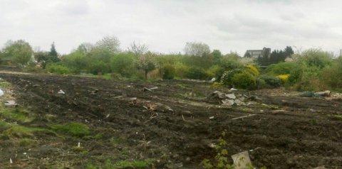 Zerstörte Gärten